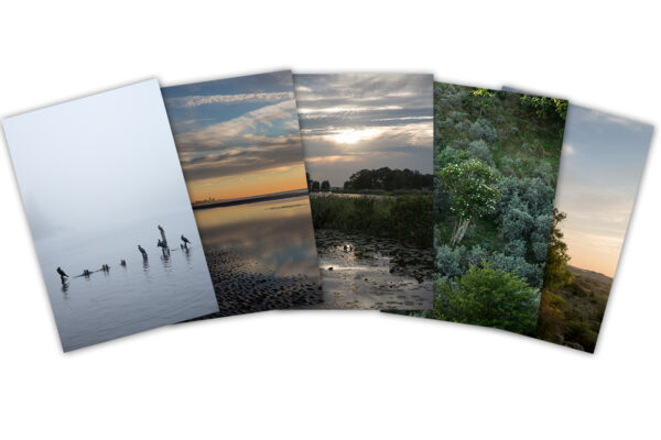 Postcard Set Romanticist Landscapes
